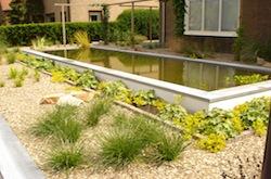 Erwin Bakker Tuinaanleg - Onderhoud kan voor een vijver in uw tuin zorgen