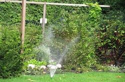 Beregening zorgt ervoor dat uw tuin er altijd fris en vrolijk uitziet in de zomer